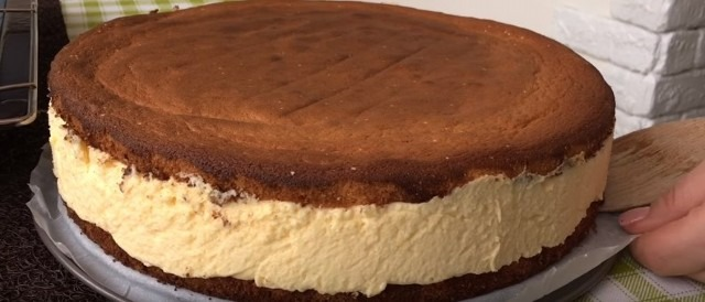 40-der_lop_snim_tort