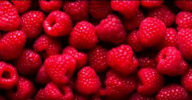 Варенье из малины на зиму. Рецепт густого варенья из малины со вкусом свежей ягоды