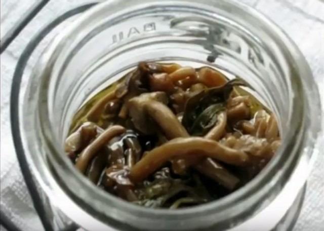 грибы с хреном