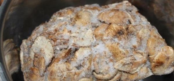 для начинки берем грибы