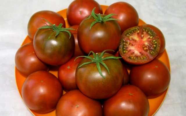 бурые томаты