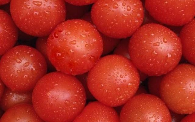 обработать помидоры