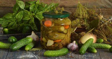 Маринованные огурцы – рецепты заготовок на зиму