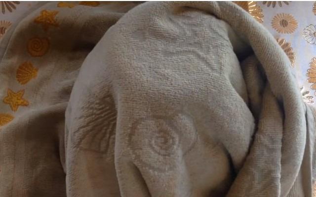 накрыть банки полотенцем