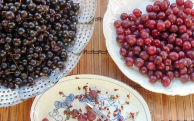 перебрать ягоду от хвостиков
