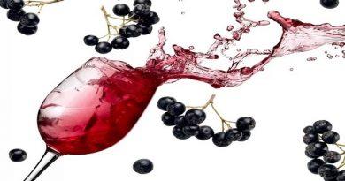Как сделать вино из черноплодной рябины — рецепты вкусного домашнего вина