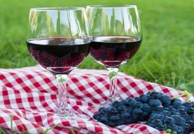 Как сделать вино из винограда Изабелла — рецепты вина сделанного в домашних условиях
