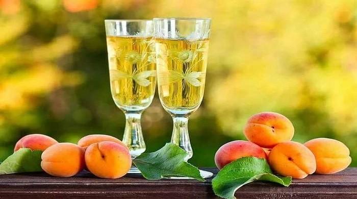 Абрикосовое вино — простые рецепты приготовления вкусного домашнего вина
