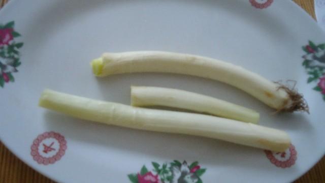 Простые и вкусные пошаговые рецепты приготовления камбалы и палтуса