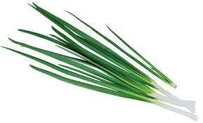 зелён лук